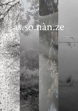 Assonanze, l'inattesa poetica della natura